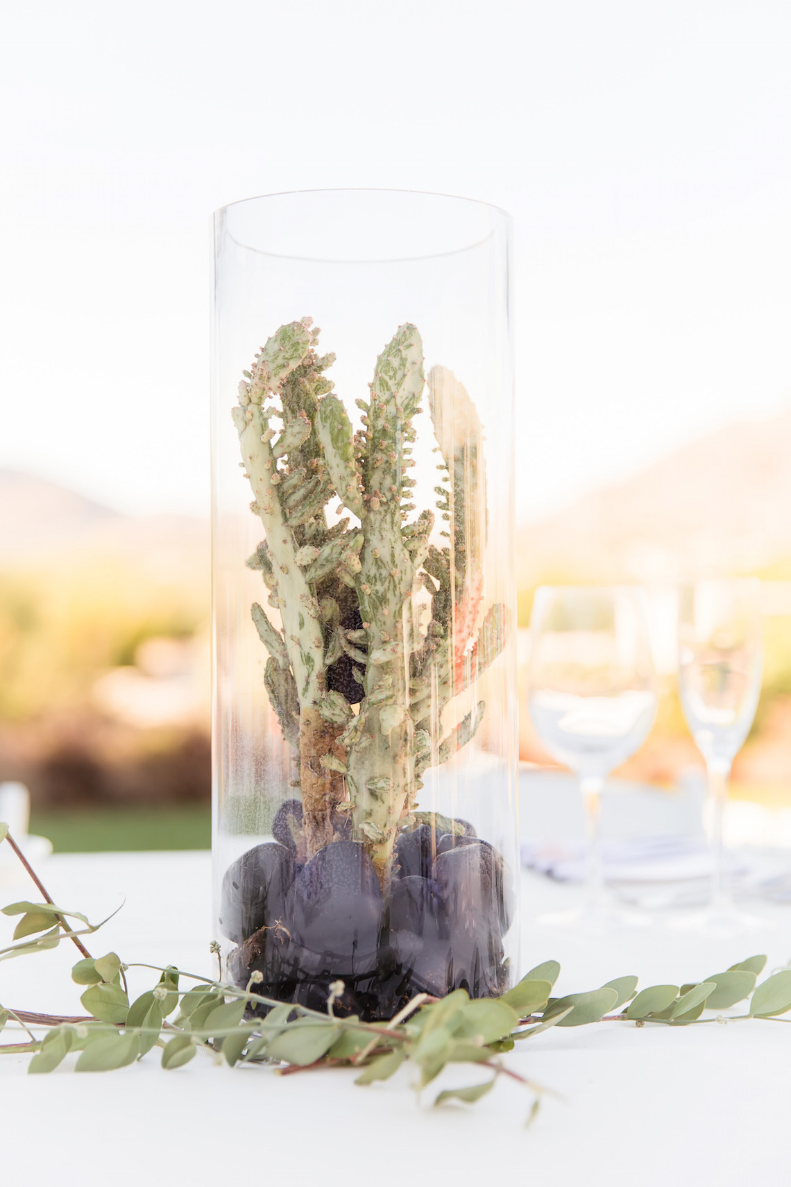Gorgeous Desert Wedding by Malone Sinclaire Photography 25
