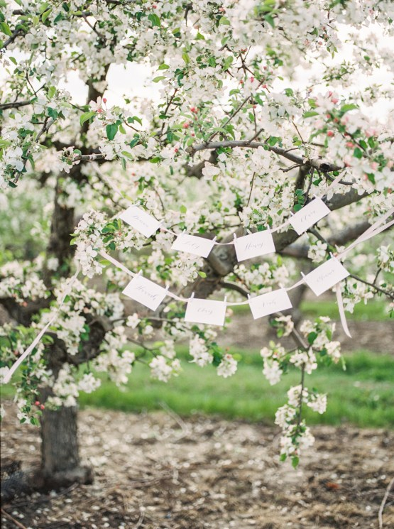 Bright and Colorful Apple Blossom Orchard Wedding Inspiration | Shanell Photography & Mitten Weddings and Events 53