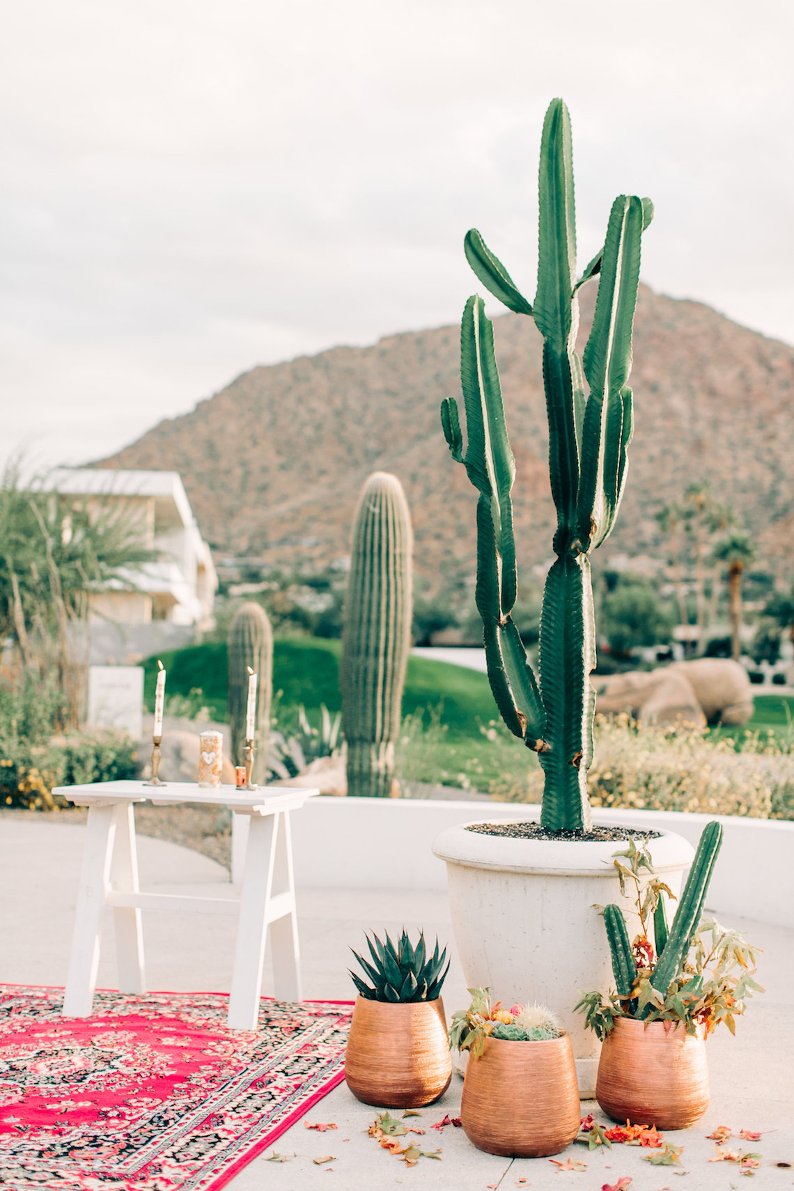 Midcentury Modern Desert Wedding Made Of Boho Dreams | Vienna Glenn 16