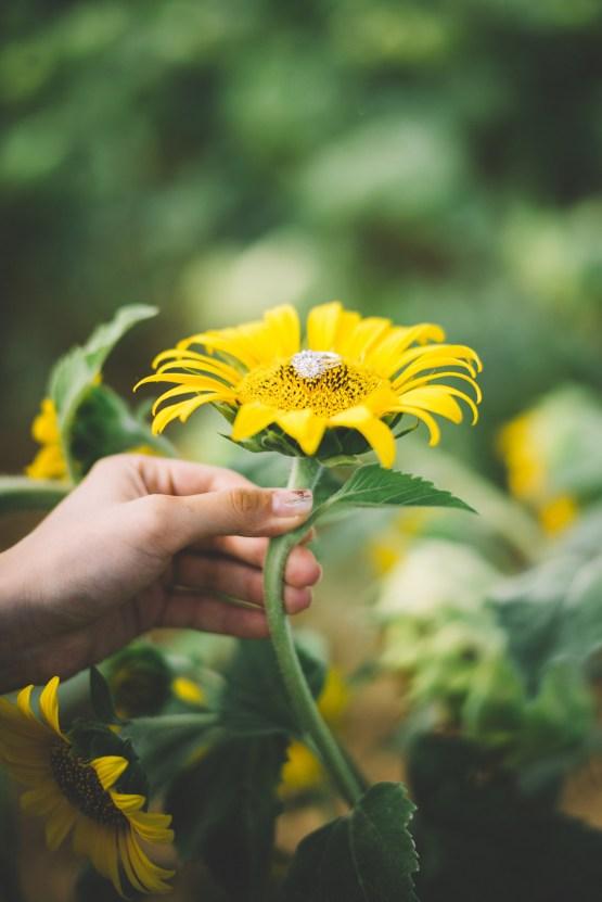 French Sunflower Wedding Inspiration | Teri B Photography 14