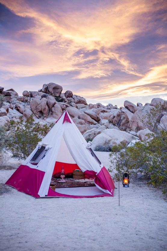Amazing Vintage Joshua Tree Camping Wedding – Someplace Images 17
