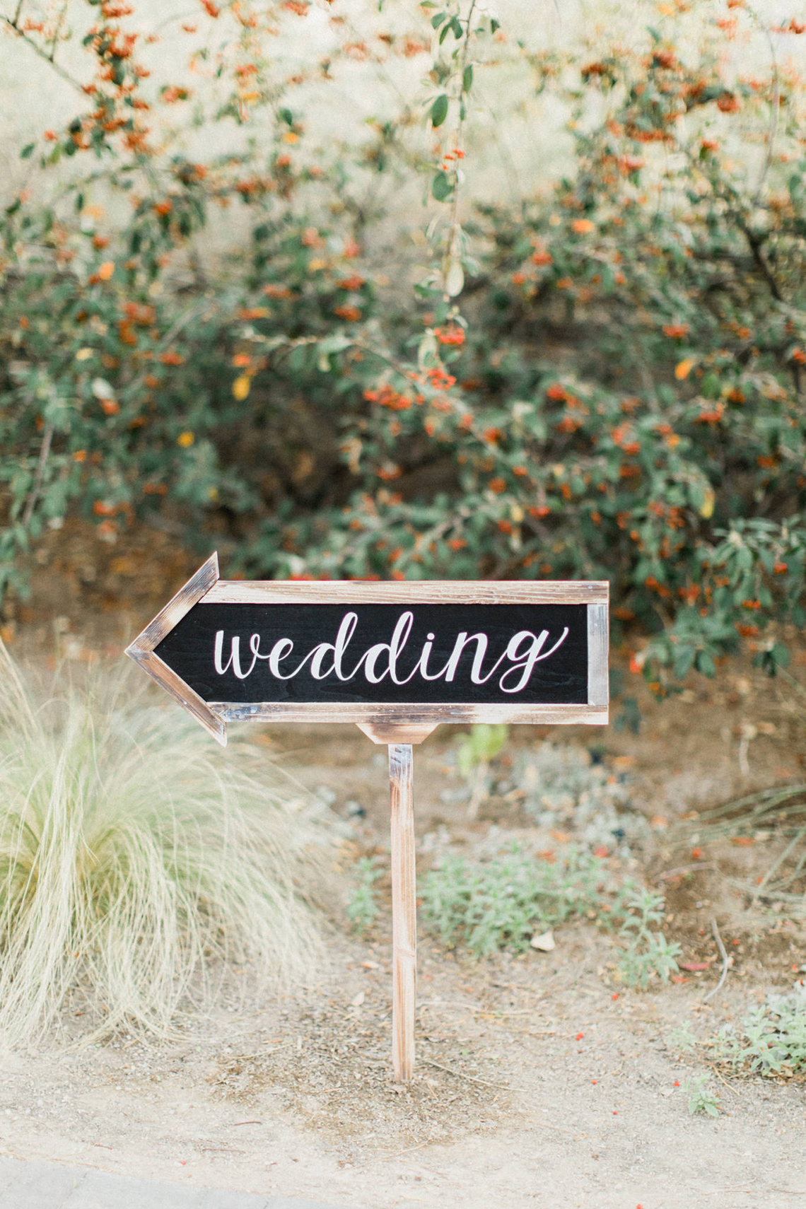 Rustic Blue Las Vegas Desert Wedding – Susie and Will 51