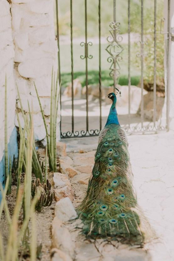 Colorful Boho Palm Springs Jewish Wedding – Lets Frolic Together 18