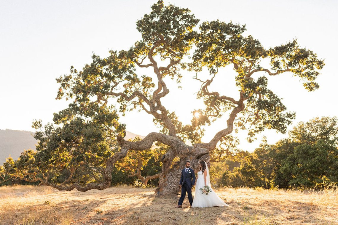 Rustic Multicultural Wedding and Sangeet at Holman Ranch – Lauren Feddersen Photography – Quintana Events 55
