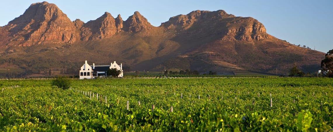 Frans Lemmens – Stellenbosch – Dream South African Honeymoon Itinerary – Claire Eliza Destination Wedding Photographer – Bridal Musings – African Wedding Week 1
