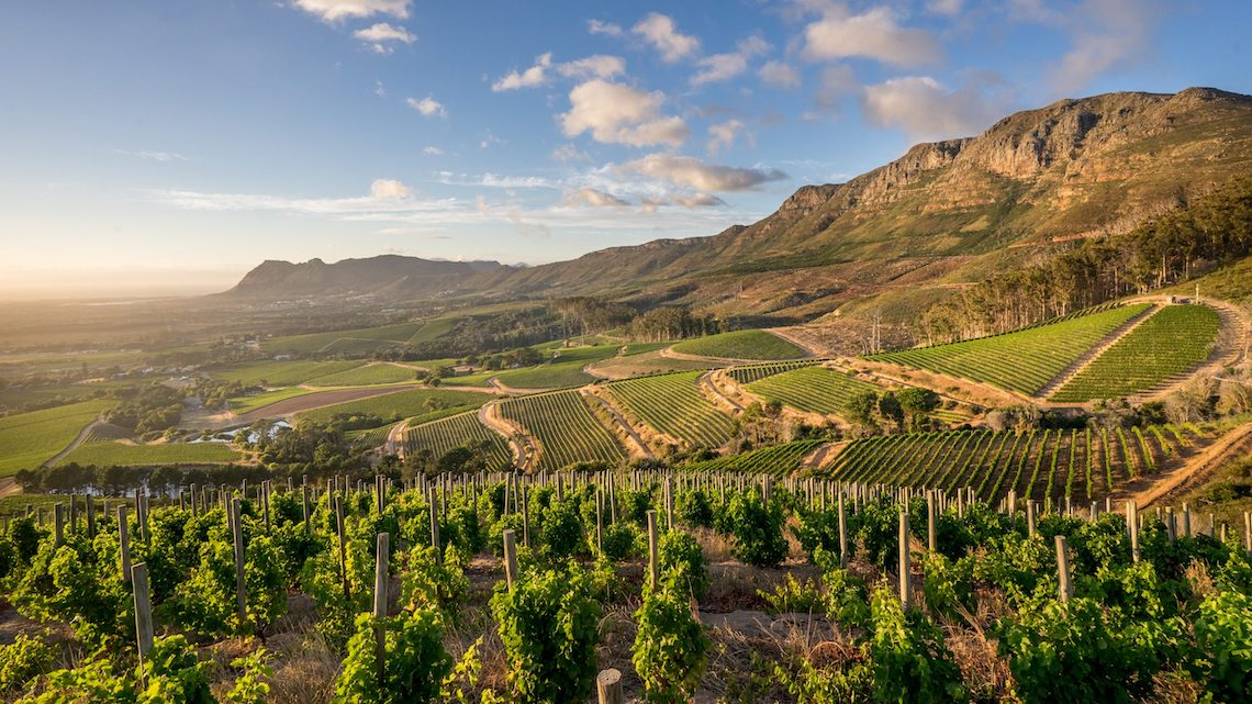 Klein Constantia – Dream South African Honeymoon Itinerary – Claire Eliza Destination Wedding Photographer – Bridal Musings – African Wedding Week 1